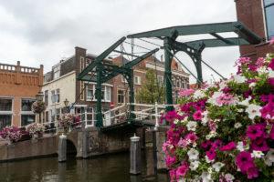 Bild aus der Stadt Leiden - Brücke, Grachten und Blumen